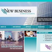 New Business ConsultantsCustomer Insight